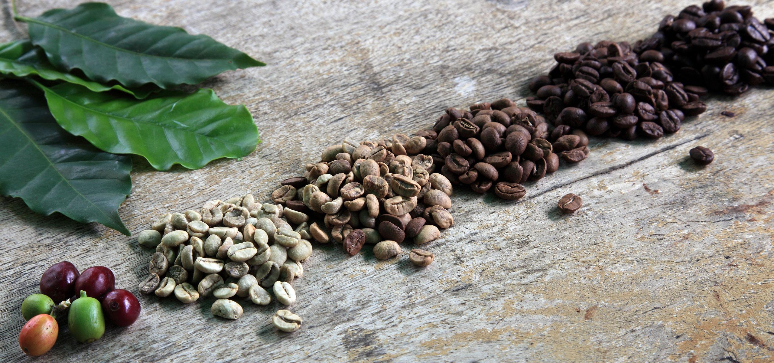 La Ruga –Die Kaffeerösterei –Slider, Sorten